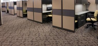Kangaroo Carpet Cleaning